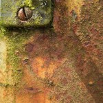 abstractphotographyrustyalgae