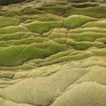 sandstone hills
