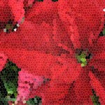 poinsetta stained glass
